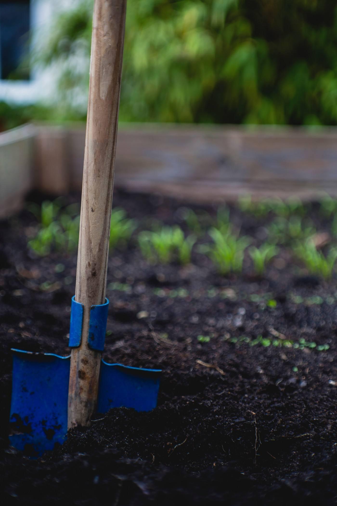 Passion Jardins  Comment préparer et amender le sol avant de planter